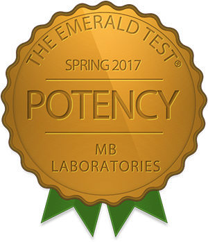 MB Labs Services